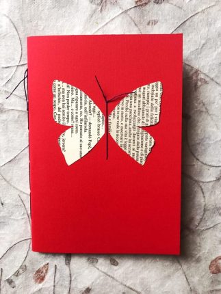 farfalla fronte
